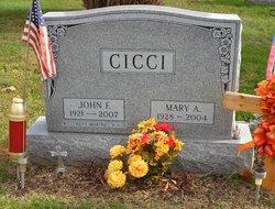 John F Cicci