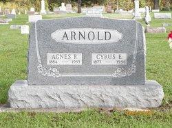 Agnes Rebecca <i>McNicol</i> Arnold