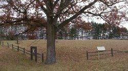 Shawano County Home Cemetery