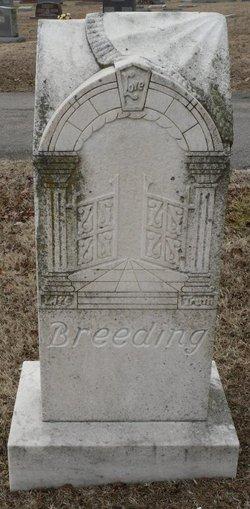Andrew J. Breeding
