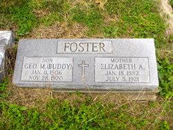 George M Buddy Foster