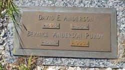 Bernice <i>Purdy</i> Anderson