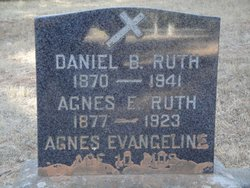 Daniel B Ruth