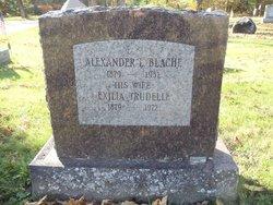 Exilia <i>Trudelle</i> Blache