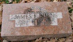 James F Burns