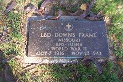 Leo Downs Frame