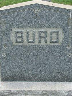 Anna <i>Burd</i> Arter