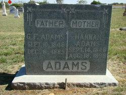 Hannah <i>Clevenger</i> Adams