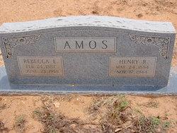 Rebecca E Amos