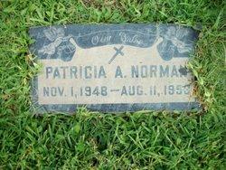 Patricia A Norman