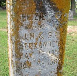 Lizzie E. Alexander