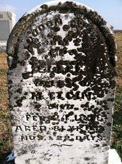 Isabella Elizabeth Sarah <i>Allen</i> Elgin
