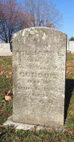 William E Gordon