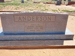 Minnie Mae <i>Pelton</i> Anderson