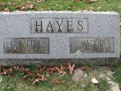 Charles Walter Hayes
