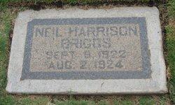 Neil Harrison Briggs