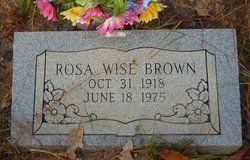 Rosa <i>Wise</i> Brown