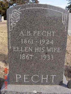 Albert Blair Pecht