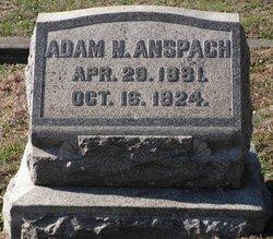 Adam N Anspach