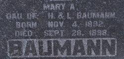 Mary A Bauman