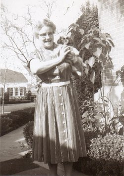 Viola Belle <i>Hoover</i> Waers