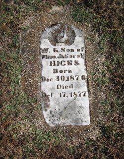 Abraham W. G. Hicks