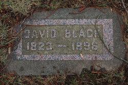David B Black