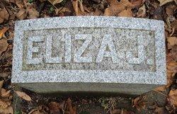 Eliza Bierer
