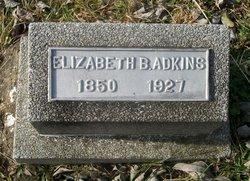Mary Elizabeth <i>Brewer</i> Adkins