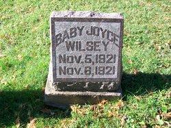Joyce Wilsey