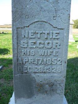 Nettie <i>Secor</i> Gott