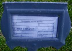 Esther D <i>Salazar</i> Chavez