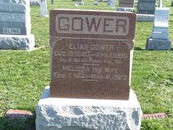 Elias Gower