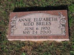 Annie Elizabeth <i>Kidd</i> Briles