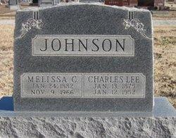 Melissa C <i>Day</i> Johnson