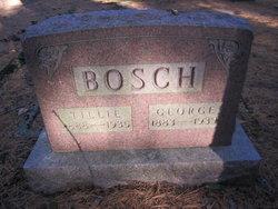 Tillie <i>Schutt</i> Bosch