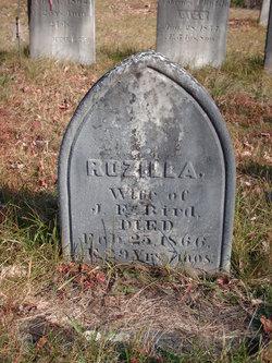 Rozilla <i>Bisbee</i> Bird