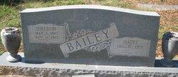 James Sheldon Bailey