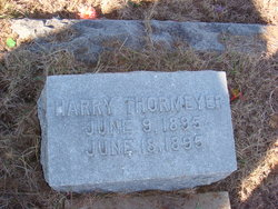 Harry Thormeyer
