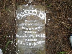 Elizabeth V Watson