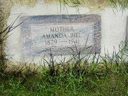 Amanda <i>Wendorf</i> Biel