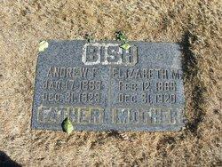 Andrew F Bish