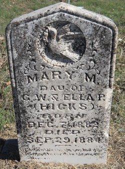 Mary M Hicks