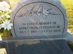 PFC Andre Cushion