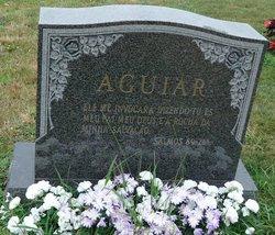 Antonio M. Aguiar