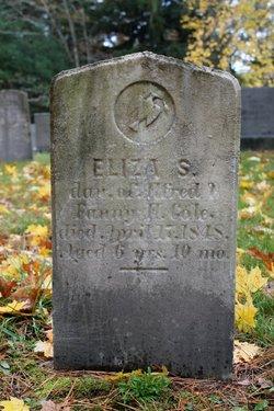Eliza S Cole