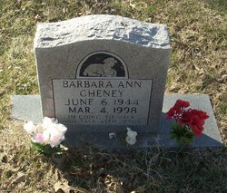 Barbara Ann Cheney
