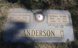 Ronald Heairl Anderson