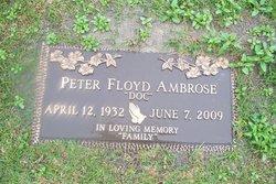Peter F. Ambrose