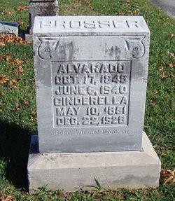 Alvarado Prosser